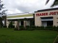 Trader Joes | Fort-Lauderdale | Commercial Landscaping Project