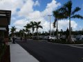 Fort Lauderdale Shopping Mall Project | Commercial Landscaping Project