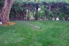 4-irrigation-system-miami