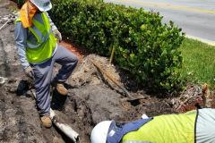 Miami-Sprinkler-Repair