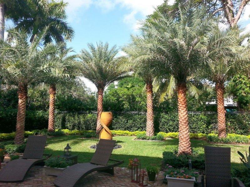 Landscape beginner landscape design miami for Landscape design miami