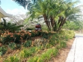 south-miami-landscape-project-1