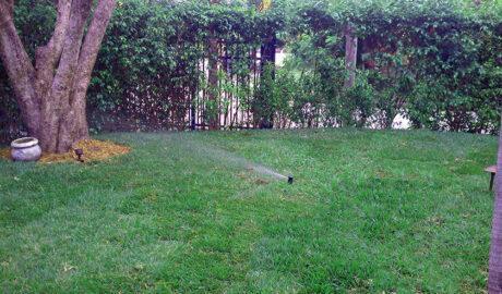 Cortada Landscape Design | Irrigation System | Design & Installation | Miami, FL | Residential Irrigation System Project