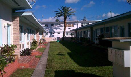 Cortada Landscape Design | Miami Beach Commercial Landscaping Project