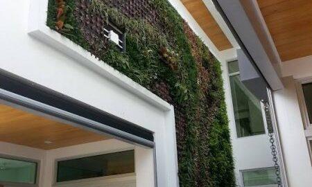 Cortada Landscape Design Living Wall | Miami, FL