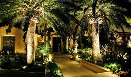 Landscape Lighting for Tropical Gardens