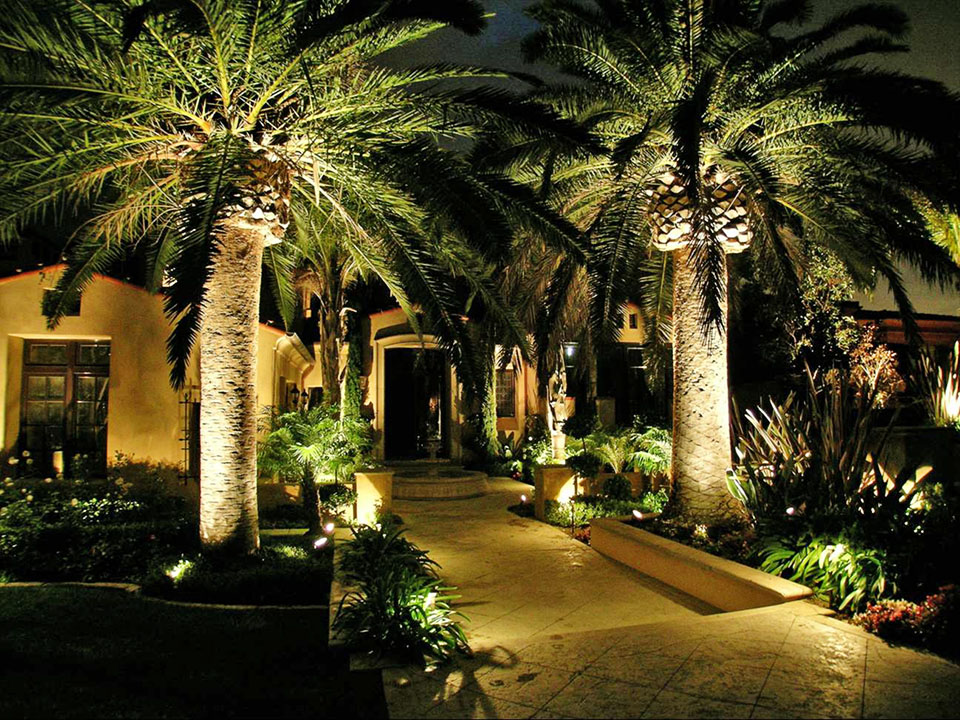 Landscape Lighting Ideas For Tropical Gardens