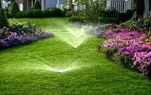 Types of Landscape and Irrigation Systems